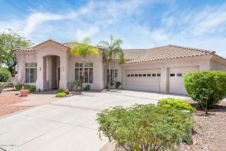 3631 E Shomi Street  , Phoenix, AZ 85044 (MLS #5284787) :: Morrison Residential LLC