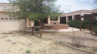 31008 N 227TH Avenue  , Wittmann, AZ 85361 (MLS #5286120) :: Carrington Real Estate Services