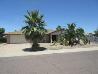 4026 W Eva Street  , Phoenix, AZ 85051 (MLS #5286553) :: Carrington Real Estate Services