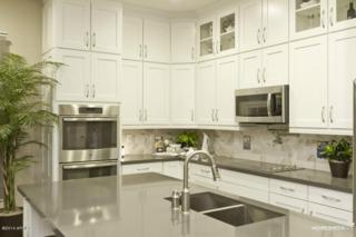 7111 W Ivanhoe Street  , Chandler, AZ 85226 (MLS #5286811) :: Carrington Real Estate Services