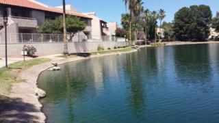 11666 N 28TH Drive  267, Phoenix, AZ 85029 (MLS #5286814) :: Carrington Real Estate Services