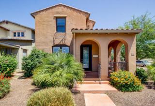 15112 W Windrose Drive  , Surprise, AZ 85379 (MLS #5294179) :: Carrington Real Estate Services