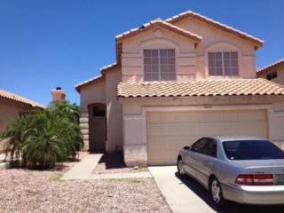 16835 S 20TH Way  , Phoenix, AZ 85048 (MLS #5297413) :: Carrington Real Estate Services