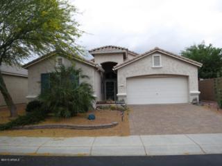 18034 N Javelina Drive  , Surprise, AZ 85374 (MLS #5300442) :: Carrington Real Estate Services