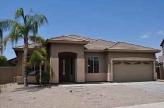 2726 N 148TH Avenue  , Goodyear, AZ 85395 (MLS #5300460) :: Carrington Real Estate Services