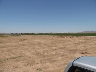 XXXX S 227TH Drive  , Buckeye, AZ 85326 (MLS #5303180) :: Carrington Real Estate Services