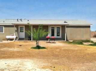 3377 W Peacock Lane  , Thatcher, AZ 85552 (MLS #5303259) :: Carrington Real Estate Services
