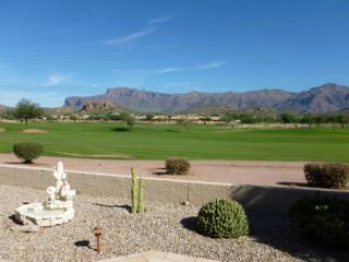 7812 E Whispering Mesquite Lane  , Gold Canyon, AZ 85118 (MLS #5190023) :: West USA Realty Revelation