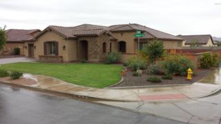 19869 E Camacho Road  , Queen Creek, AZ 85142 (MLS #5190055) :: West USA Realty Revelation