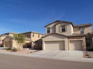 42921 N 46th Avenue  , Anthem, AZ 85087 (MLS #5218604) :: Quantum of Arizona, REALTORS