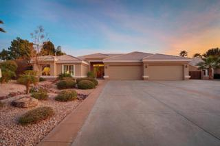 8601 W Via Montoya Drive  , Peoria, AZ 85383 (MLS #5236482) :: West USA Realty Revelation