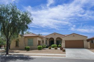 1511 W Calle De Pompas  , Phoenix, AZ 85085 (MLS #5253017) :: Keller Williams Legacy One Realty