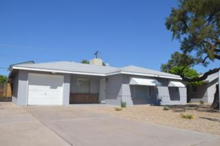 3918 E Oak Street  , Phoenix, AZ 85008 (MLS #5253882) :: Arizona Best Real Estate