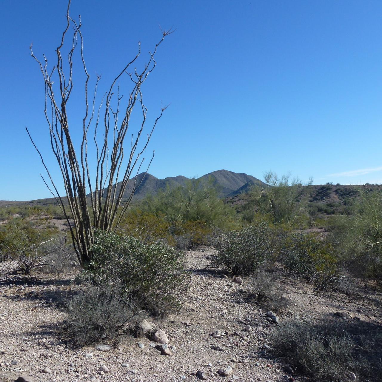 13XXX Blue Coyote Trail - Photo 2