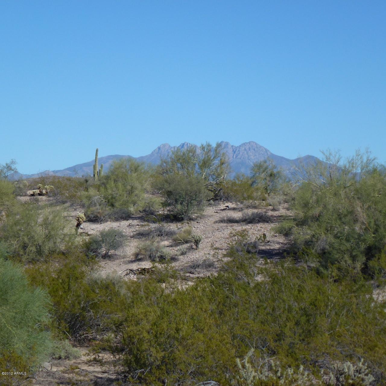 13XXX Blue Coyote Trail - Photo 3