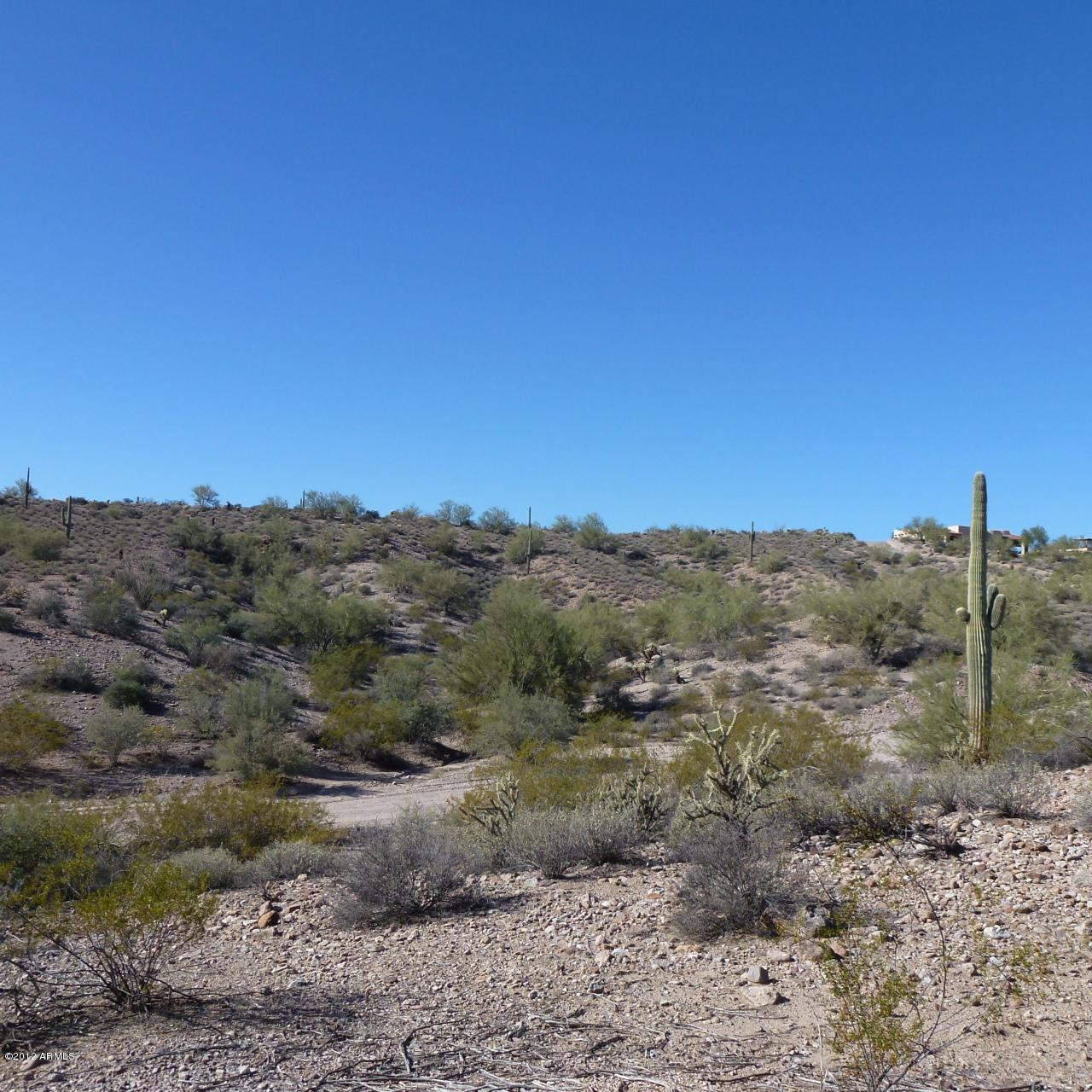 13XXX Blue Coyote Trail - Photo 4