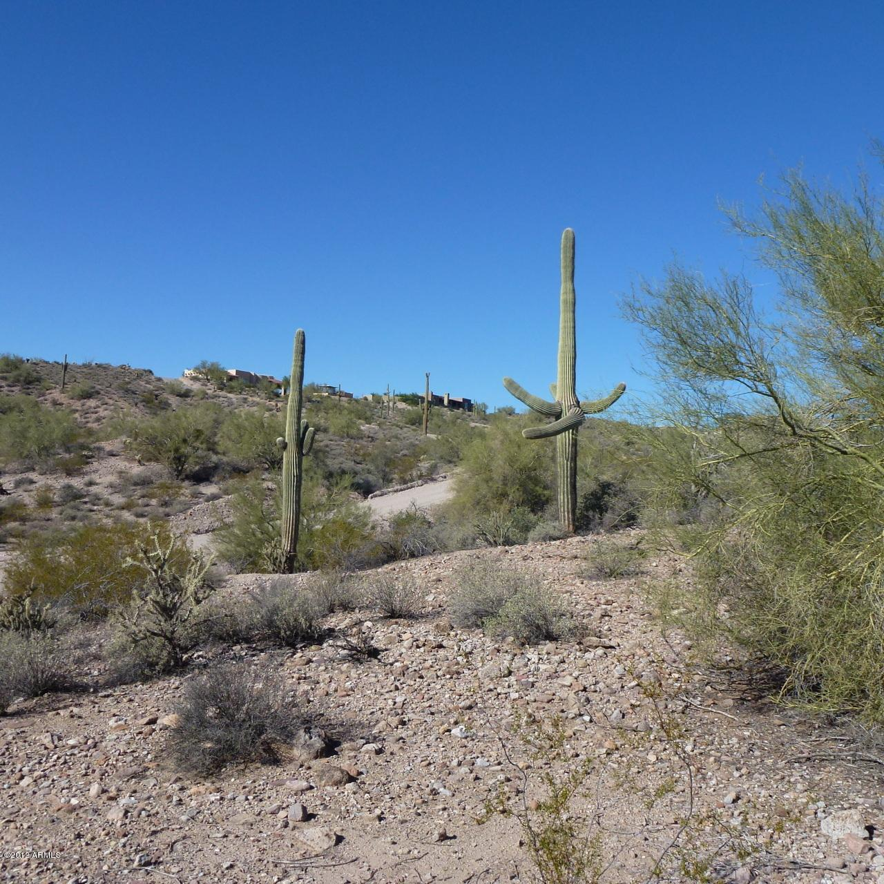 13XXX Blue Coyote Trail - Photo 5