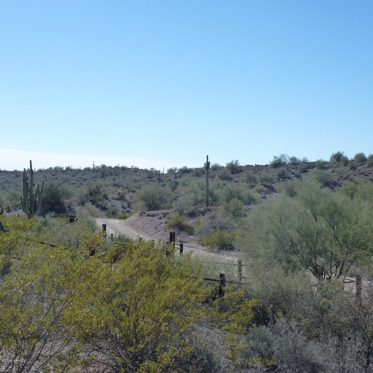 13XXX Blue Coyote Trail - Photo 7