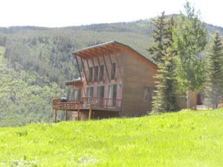1162  Mclaughlin Lane  , Basalt, CO 81621 (MLS #134840) :: Aspen Snowmass Sotheby's International Realty