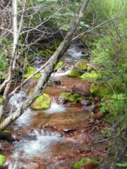 400  Ruedi Creek Road  , Basalt, CO 81621 (MLS #135932) :: Aspen Snowmass Sotheby's International Realty