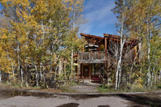 1280  Ute Avenue  #25, Aspen, CO 81611 (MLS #136349) :: Aspen Snowmass Sotheby's International Realty