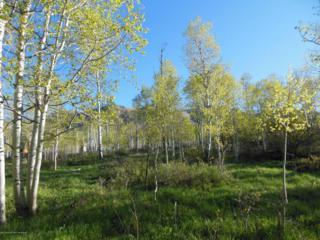 359  Hawk Lane  , Basalt, CO 81621 (MLS #133538) :: Aspen Snowmass Sotheby's International Realty