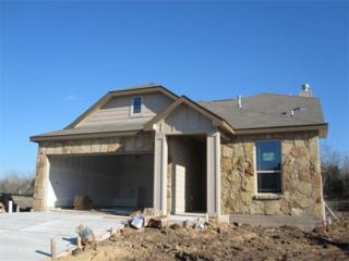 10429  Crescendo Dr  , Austin, TX 78747 (#1672791) :: Papasan Real Estate Team @ Keller Williams Realty