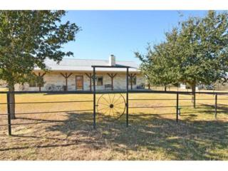 389  Goertz Dr  A, Red Rock, TX 78662 (#1701769) :: Better Homes and Gardens Real Estate Bradfield Properties