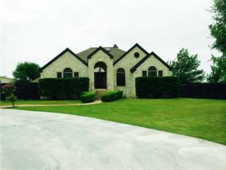 210  Morningside Cir  , Hutto, TX 78634 (#1935934) :: Better Homes and Gardens Real Estate Bradfield Properties