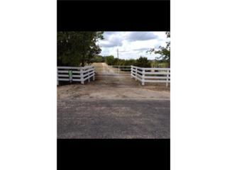 1020  County Road 267  , Georgetown, TX 78628 (#2270046) :: The Heyl Group at Keller Williams