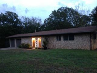 1401 N Redondo Dr  , Austin, TX 78721 (#3707286) :: Better Homes and Gardens Real Estate Bradfield Properties