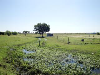 6635  Highway 79 (East Tract)  , Hutto, TX 78634 (#3774669) :: Better Homes and Gardens Real Estate Bradfield Properties