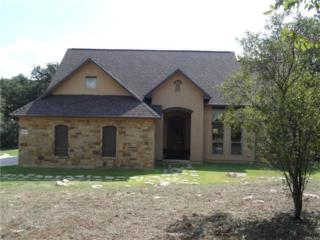 2527  Mountain High Dr  , San Marcos, TX 78666 (#3986183) :: Watters International