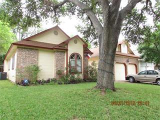 9504  Roxanna Dr  , Austin, TX 78748 (#5266326) :: Papasan Real Estate Team @ Keller Williams Realty