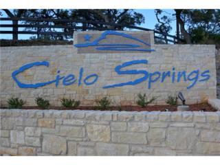 Lot 114  El Nopal Dr  3, Blanco, TX 78606 (#5534156) :: Better Homes and Gardens Real Estate Bradfield Properties