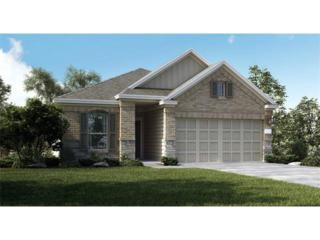 6105  Mary Lewis Drive Dr  , Austin, TX 78747 (#6152801) :: Watters International