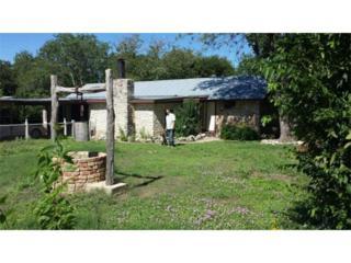 406  Green Mdws  , Pflugerville, TX 78660 (#6353951) :: Watters International