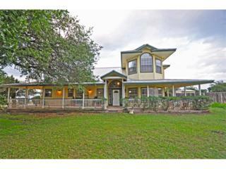3120  County Road 252  , Bertram, TX 78605 (#6369589) :: Watters International