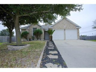 1406  Grafton Ln  , Pflugerville, TX 78660 (#7164329) :: Luxury Texas Living Real Estate Group of Keller Williams Realty Cedar Park Leander