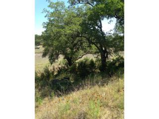 0000  Sunset Cliff Rd  , Burnet, TX 78611 (#7675562) :: Papasan Real Estate Team @ Keller Williams Realty