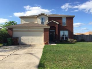 417  Thunderstorm Ave  , Lockhart, TX 78644 (#8205813) :: Papasan Real Estate Team @ Keller Williams Realty