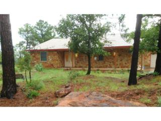 127  Pinedale Dr  , Bastrop, TX 78602 (#8657075) :: Better Homes and Gardens Real Estate Bradfield Properties