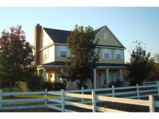 9119  Burklund Farms Rd  , Del Valle, TX 78617 (#8929737) :: Luxury Texas Living Real Estate Group of Keller Williams Realty Cedar Park Leander