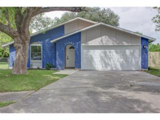 11202  Brunt Dr  , Austin, TX 78758 (#9629325) :: Papasan Real Estate Team @ Keller Williams Realty