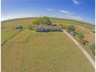 1687  Homannville Trl  , Lockhart, TX 78644 (#4750328) :: Watters International