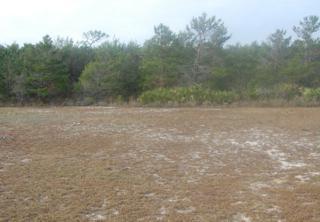 0  Lagoon Circle  , Gulf Shores, AL 36542 (MLS #193553) :: Jason Will Real Estate