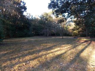 12220  Pecan Grove Street  , Magnolia Springs, AL 36555 (MLS #206512) :: Jason Will Real Estate