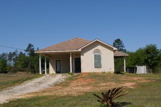 39161  Highway 59  , Bay Minette, AL 36507 (MLS #211318) :: Jason Will Real Estate