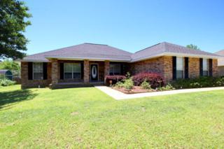 16456  Tempest Dr  , Foley, AL 36535 (MLS #212518) :: Jason Will Real Estate