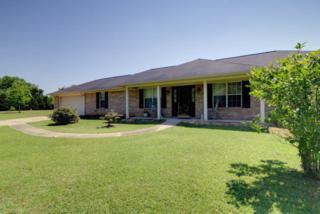 11888  Stucki Rd  , Elberta, AL 36530 (MLS #212604) :: Jason Will Real Estate